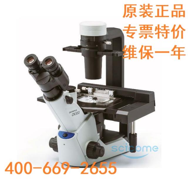 CKX53倒置显微镜