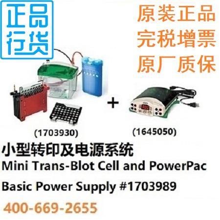 小型转印及电源系统