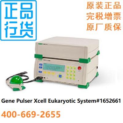 电穿孔仪真核生物系统